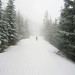 Snowshoe to Copper Creek Hut - Jan 14, 2012