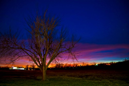 sunset red tree night landscape cloudy