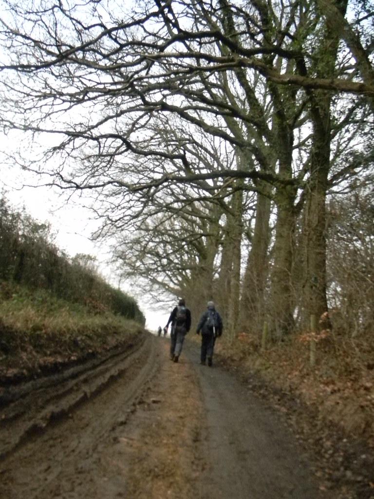 Up a lane Aldermaston to Woolhampton