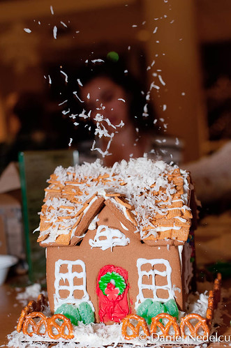 2011-12-05 - Gingerbread houses 017 - for web