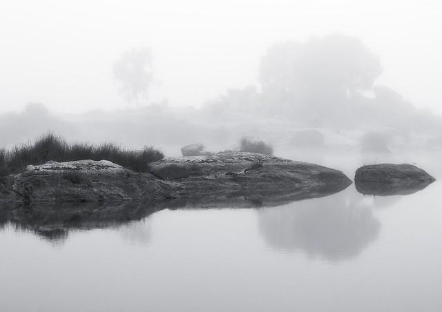 Charca envuelta por la niebla