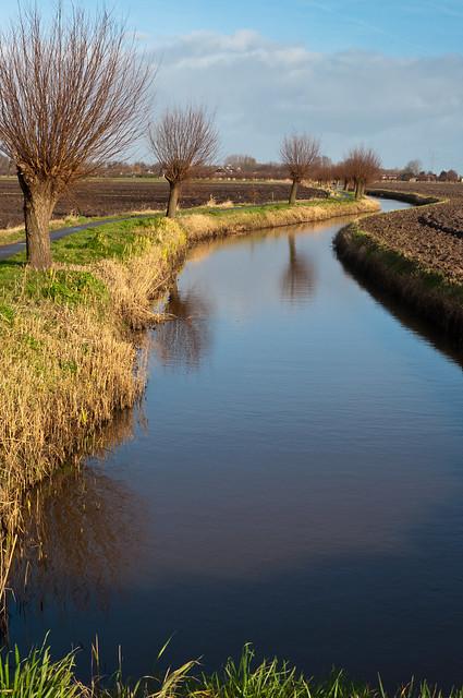Polder landschap - Dutch polder landscape in winter