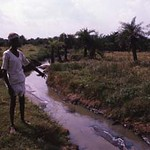 Villager showing canal carrying industrial effluent from Bollaram industrial area, Medak (D), Andhra Pradesh