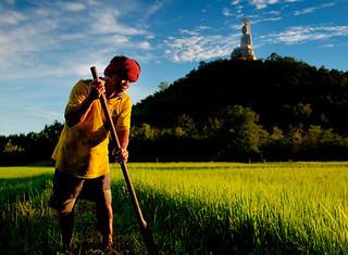 Farmers: Lifeline of a Nation