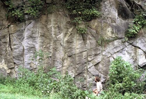 appalachians geology stratigraphy carbonates limestone crinoidalgrainstone crossbeds dunes mississippian carboniferous visean stegenevieve crinoids virginia greenbrierlimestone greendalesyncline rte80 conodonts