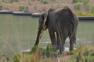 Pilanesberg Game Reserve, South Africa | by Robert Nyman