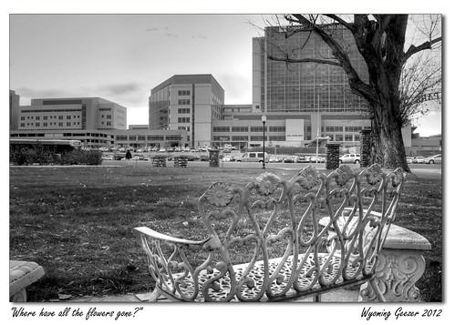flowers bench utah smokestacks metaphor murray asarco smelter ihc murraypark peteseeger peterpaulandmary intermountainmedicalcenter murrayladiesclub