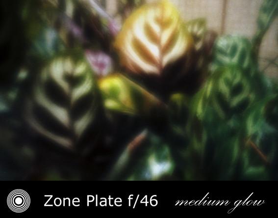 zp2411-07