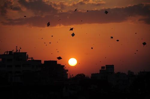 sunset wallpaper india kite color colour colors silhouette festival evening colours silhouettes kites string gujarat ahmedabad uttarayan sankranti shah makar patang भारत saumil firki incredibleindia uttran uttaran અમદાવાદ अहमदाबाद ગુજરાત saumilshah માંજો गुजरात ઉત્તરાયણ પતંગ દોરી ભારત अतुल्यभारत અતુલ્યભારત નિર્મળ खुशबू खुशबूगुजरातकी