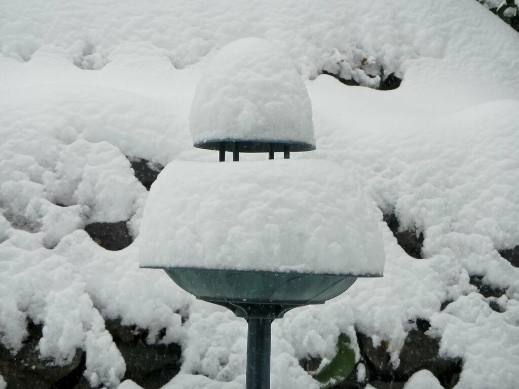 Snowy Bird Bath