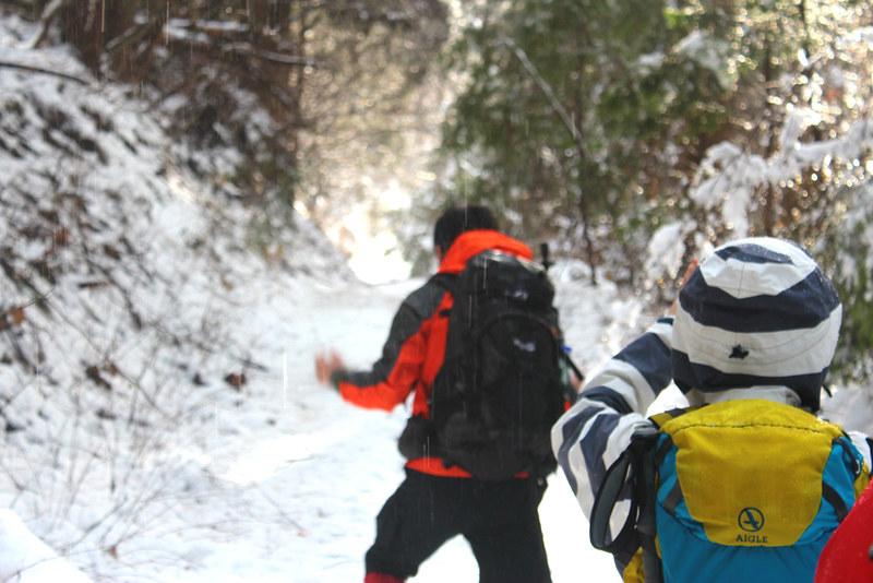 雪の高川山