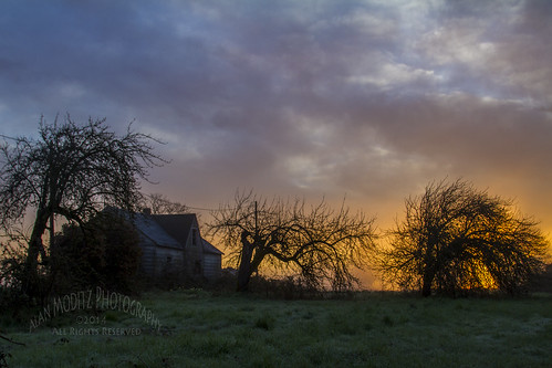 ranch trees sky color abandoned grass silhouette clouds sunrise decay farm sunup daybreak 2014