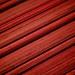 Vibrant Lines (28/365)