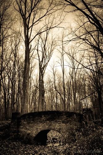 park bridge trees winter nature stone creek outdoors hiking mortar isolation wpa toledoareametroparks swantonohio oakopeningspreserve