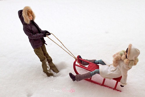 Red-Sledge-2 | by 6_6 tina