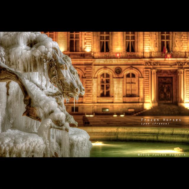 Frozen horses   Lyon (France) / v2 {explored}