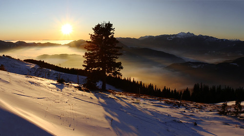 winter sunset shadow panorama snow tree fog landscape slovenia golte jankorosec