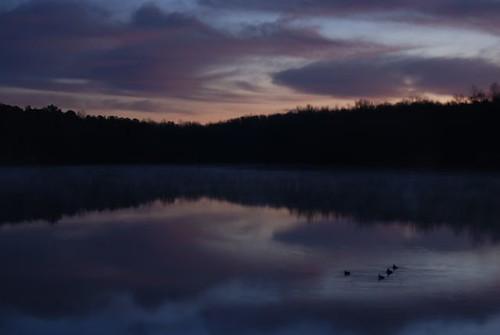 lake reflection sunrise ga georgia dawn pikecounty grebe