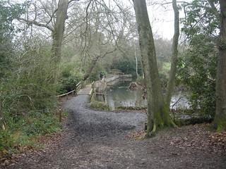 Keston ponds
