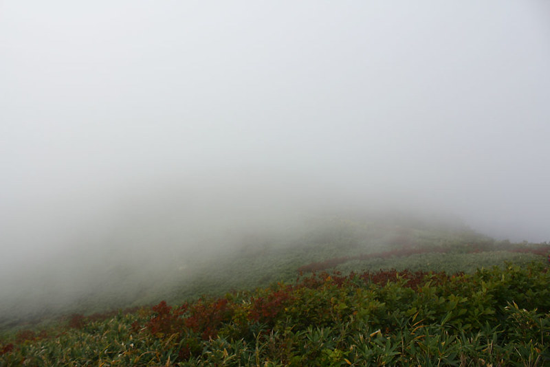 雨飾山_49