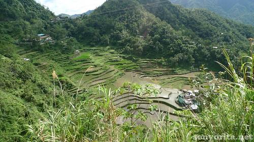 Batad-Ifugao-P2-183 | by micamyx