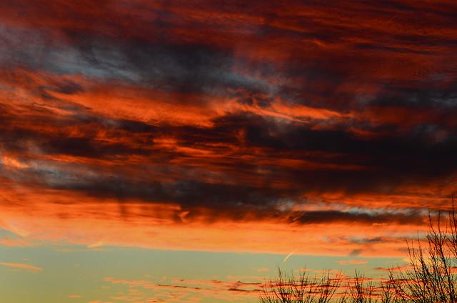 Sunset for Sake