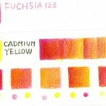 fuchsia_cadmium_yellow_01