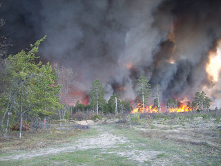 Meridian Fire of 2010 | by USFWS Headquarters