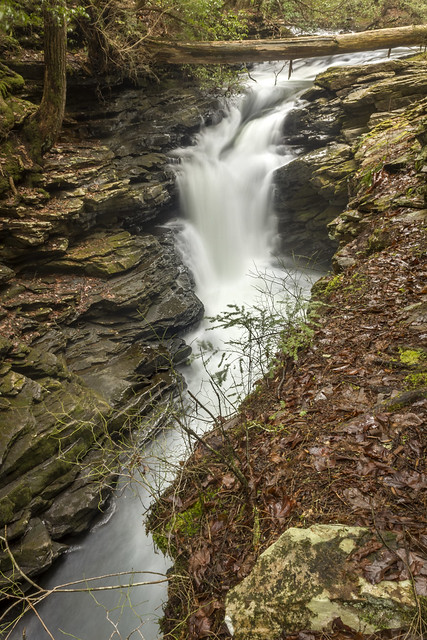 Black Canyon Cascades, Fiery Gizzard Trail, Grundy Forest SNA, Grundy Co, TN