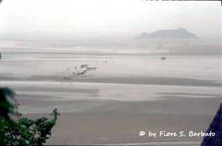 Le Mont-Saint-Michel [F], 2002, Il viaggio, a piedi, verso Mont Saint Michel attraverso la laguna in bassa marea.