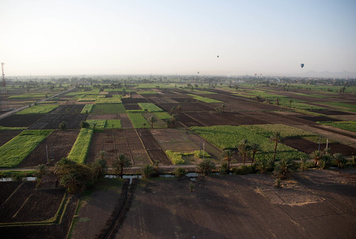 Aerial view of fields on west bank of Nile | by Dennis Wright