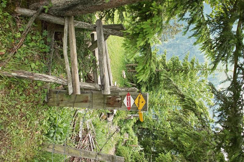 26.06.2009 - Schyniger Platte SDIM0336