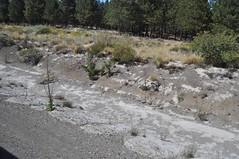 Cendres d'una erupció a un volcà chilè (l'any passat)
