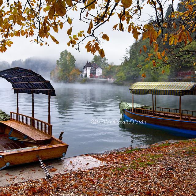 Autumn caresses