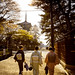 Late afternoon on Nara, Japan / Japón by Lost in Japan, by Miguel Michán