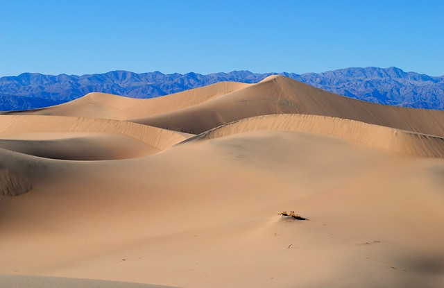 Star Dunes in Death Valley California.