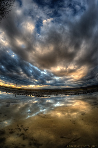 winter sunset usa mountain water clouds reflections virginia nikon fisheye cloudscapes lovettsville loudouncounty tomlussier puddlesunset