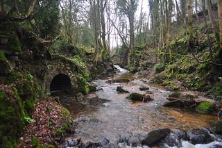 Clywedog Valley Walk   by Christopher Owen Jones
