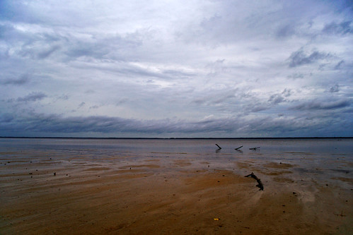 beach rain clouds river driftwood grayday a850 neuserive