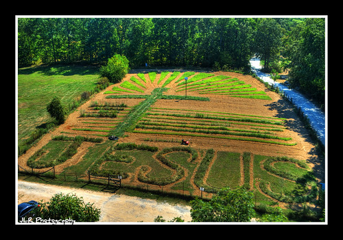garden photography photo nikon view cross landscaping tennessee flag jesus free treehouse hdr 2012 usflag jesuschrist cumberlandcounty middletennessee crossvilletn d5000 ministerstreehouse jlrphotography nikond5000 worldhdr