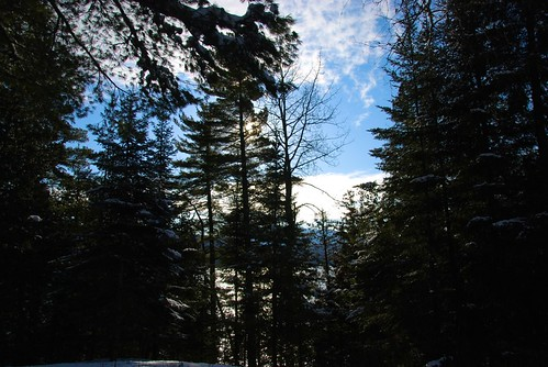 trees winter sky lake snow canada nature clouds forest afternoon quebec hiver country north lac bluesky ciel arbres neige nuages campagne contrejour nord conifers againstthelight cielbleu stdonat forêt aprèsmidi lanaudière conifères