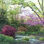 Cylburn Gardens