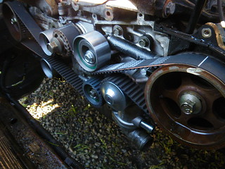 new timing belt | by red alder ranch