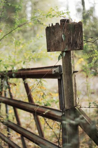 sign rural fence landscape louisiana gate bokeh blank fencepost mrgreenjeans farmgate gaylon canonef50mmf18ii gaylonkeeling