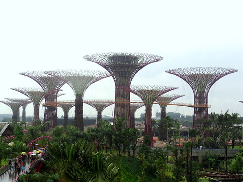 the Supertree Grove at Bay South; Gardens by the Bay, Singapore | by Jackerbie