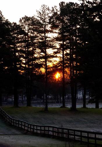 winter silhouette sunrise virginia