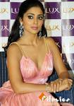 Actress Hot Gallery | by lawrence david