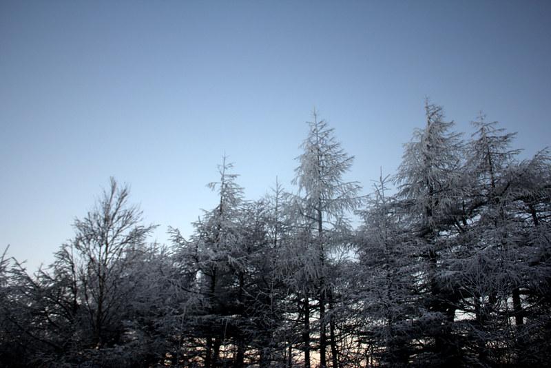 浅間山雪山
