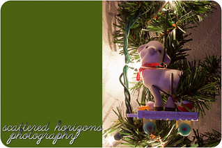 Week 50 - Holiday Traditions - Good to Wow Edit