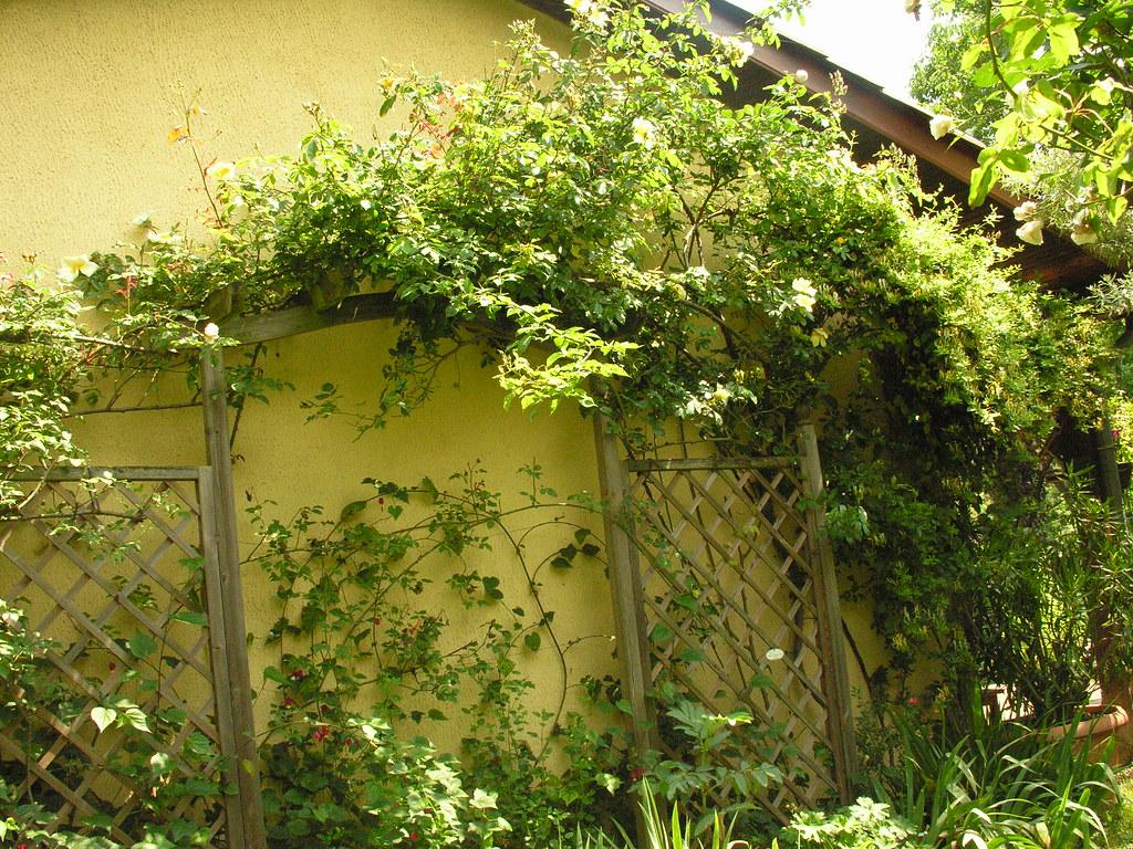 Les Jardins Des Monts D Or jardin des roses à st romain au mont d'or 69 france | flickr